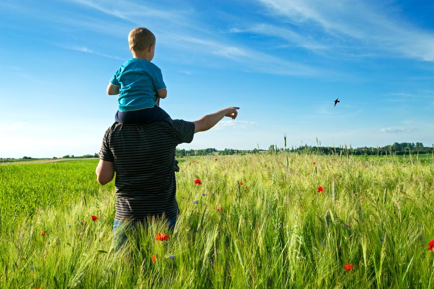 Fathers Rights - Alabama Child Custody - Bradford Ladner